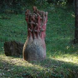 Matollada de creus [5]